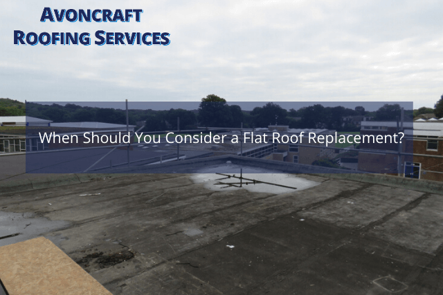 When Should You Consider a Flat Roof Replacement